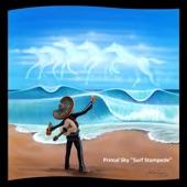 Primal Sky - Surf Stampede