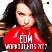 EDM Workout Hits 2017
