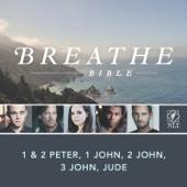 3 John Chapter 1