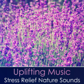 Uplifting Music: Stress Relief Nature Sounds, Proven Reduce Stress Hormones, Healing & Repairing Sounds