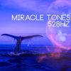 Solfeggio Frequencies 528Hz - Miracle Tones - Healing Frequencies, 528Hz DNA Reparation Music of Love and Stress Relief  artwork