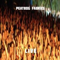 Live by Peatbog Faeries on Apple Music