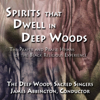 The Deep Woods Sacred Singers & James Abbington - I Know I Got Religion, Yes, Yes! artwork