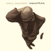 Manu Dibango - Wakafrika artwork