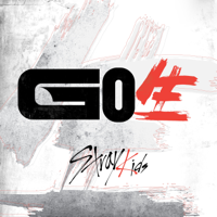 GO LIVE - Stray Kids