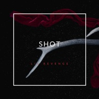 Shot (feat. Roddy Ricch) - Single Mp3 Download