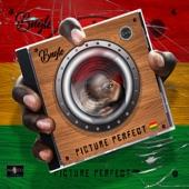 Bugle - Picture Perfect (feat. Jada Kingdom)