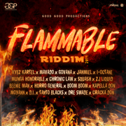 Flammable Riddim - Various Artists - Various Artists