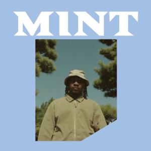 Floyd Fuji - Mint feat. Syd B
