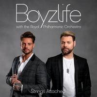 Boyzlife - You Needed Me artwork