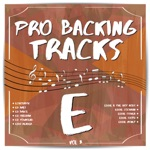 Pro Backing Tracks E, Vol.3