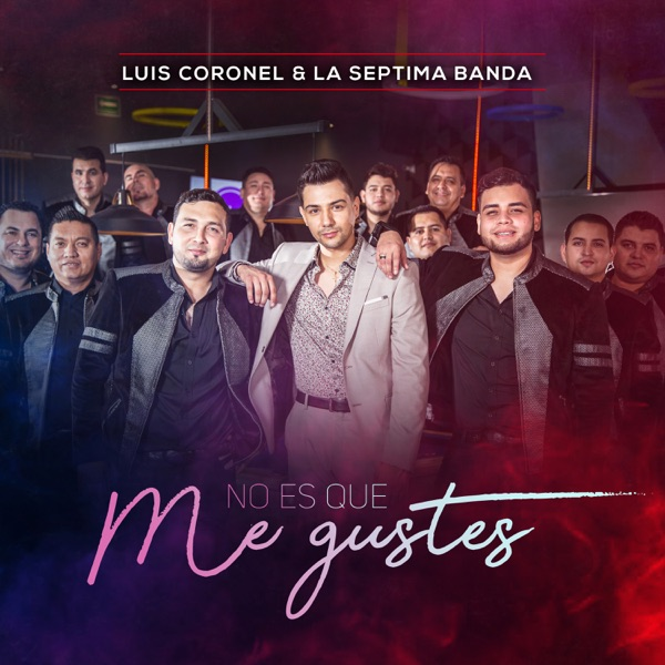 No Es Que Me Gustes - Single