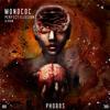 Monococ - Perfect Illusion artwork