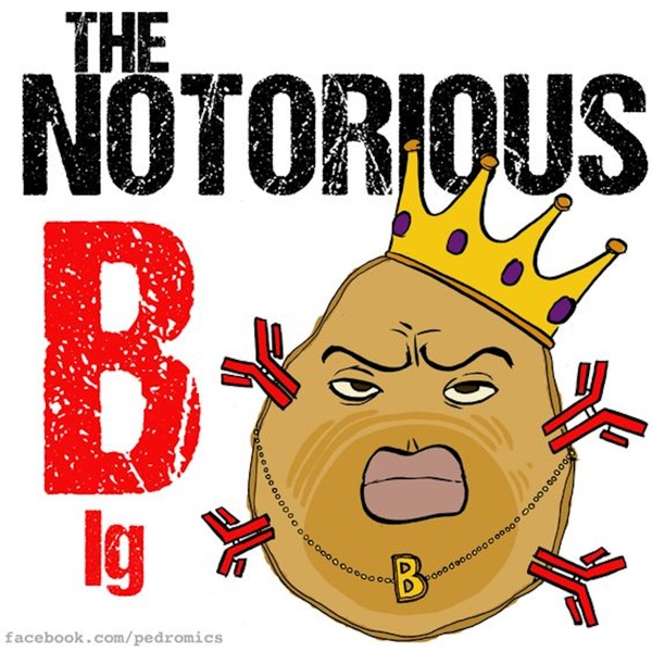 Notorious B Ig