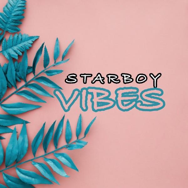 Vibes - Single
