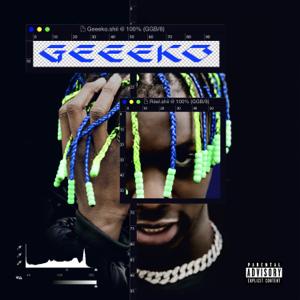 Geeeko - Réel