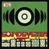 Soundsystem, 311