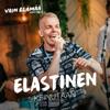 Elastinen - Keinutaan (Vain elämää kausi 10) artwork
