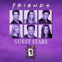 Télécharger Friends, Guest Stars, Vol. 1 (VF) Episode 9