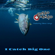 Ocho Macho - I catch big one (feat. Vilmos Varga)