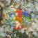 Teenage Birdsong - Four Tet