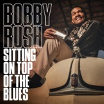 Bobby Rush - You Got the Goods on You