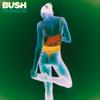 Bush - The Kingdom  artwork