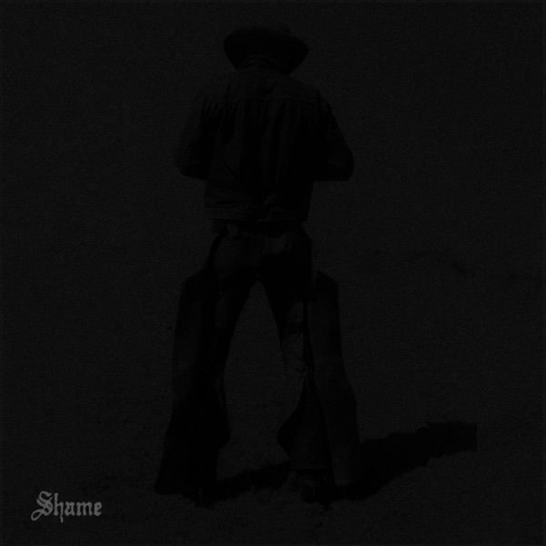 Shame (feat. Phoebe Bridgers) - Single