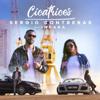 Sergio Contreras - Cicatrices (feat. Indara) portada