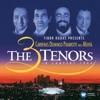 The Three Tenors in Concert (Live at Dodger Stadium, Los Angeles, 1994), Zubin Mehta, José Carreras, Plácido Domingo & Luciano Pavarotti