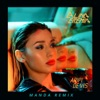 Aripi De Vis (Manda Remix) - Single, Alina Eremia