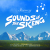 Stormzy - Sounds of the Skeng artwork