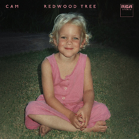 Cam - Redwood Tree artwork