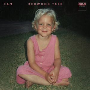 Cam - Redwood Tree