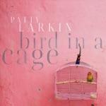 Patty Larkin - Jimmy Eagle's Hot Cowboy Boots Blues (feat. Jonatha Brooke)
