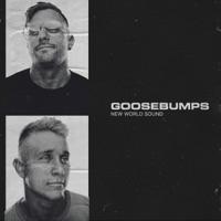 Goosebumps (Record Mix) - NEW WORLD SOUND