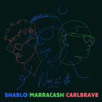 Shablo, Marracash & Carl Brave - Non Ci Sto artwork