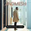 Andmesh - Cinta Luar Biasa (Acoustic Version) artwork