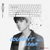 迪瑪希 - Couldn't Leave (電視劇《親愛的, 熱愛的》插曲) 插圖