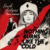 Snoh Aalegra - Nothing Burns Like the Cold (feat. Vince Staples)