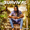 Ginjah - Survival artwork