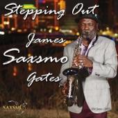 James Saxsmo Gates - Hero (feat. Alan Parker)