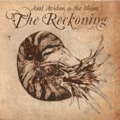Reckoning Song - Asaf Avidan & The Mojos