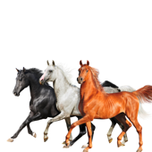 Old Town Road (Diplo Remix) - Lil Nas X, Billy Ray Cyrus & Diplo
