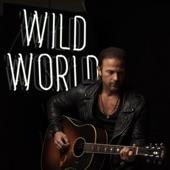 Wild World artwork