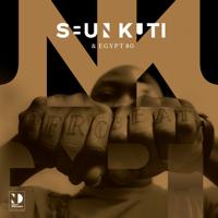 Download Mp3 Seun Kuti - Seun Kuti & Egypt 80 (Night Dreamer Direct-To-Disc Sessions)