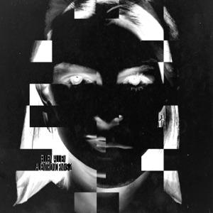 Ellen Allien - Bowie in Harmony