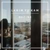 Dezine - Larim Yu Kam artwork
