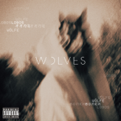 Wolves - MISSIO