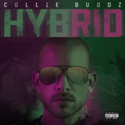 Hybrid - Collie Buddz - Collie Buddz